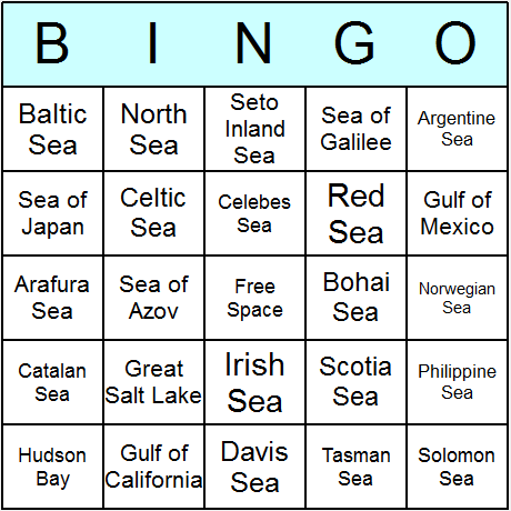 Seas Bingo Card