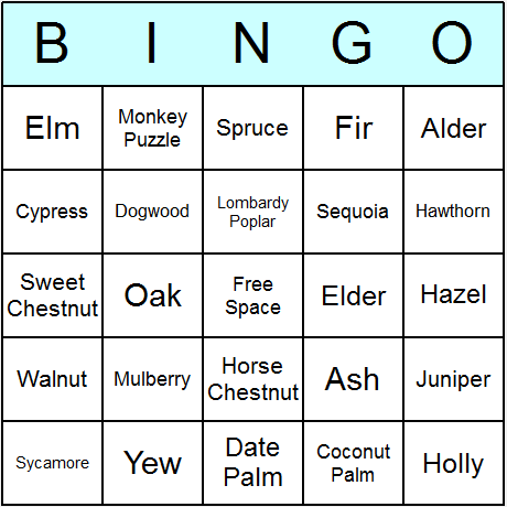 Trees Bingo Card